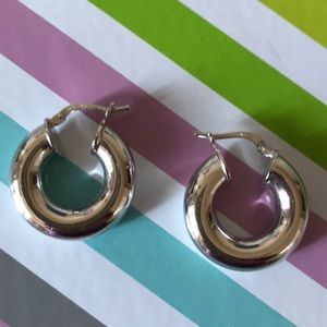Silver Tone Small Thick Hoop Earrings